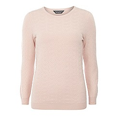 Dorothy Perkins - Tall pink heart blister jumper