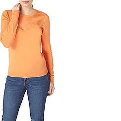 Dorothy Perkins - Orange pointelle chevron knitted jumper