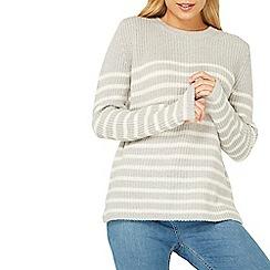 Dorothy Perkins - Soft stitch stripe print jumper
