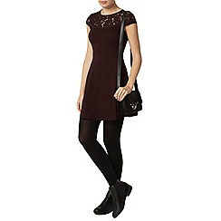 Dorothy Perkins - Raisin lace front dress