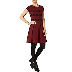 Dorothy Perkins - Cranberry stripe lace dress