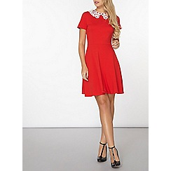 Dorothy Perkins - Red lace collar fit and flare dress