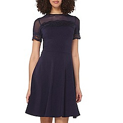 Dorothy Perkins - Tall navy lace and mesh dress
