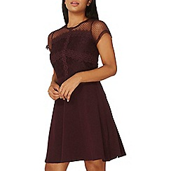 Dorothy Perkins - Aubergine lace and mesh skater dress