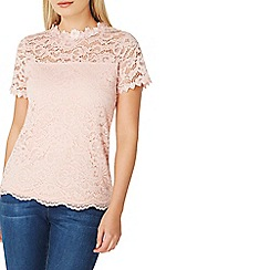 Dorothy Perkins - Nude lace and mesh t-shirt