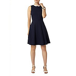 Dorothy Perkins - Navy scallop collar skater dress