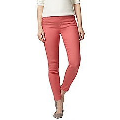 Dorothy Perkins - Rose eden capri jeggings