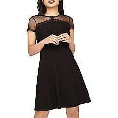 Dorothy Perkins - Petite black lace jersey skater dress