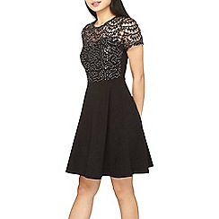 Dorothy Perkins - Petite black sequin lace fit and flare dress