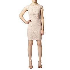 Dorothy Perkins - Petite blush lace pencil dress