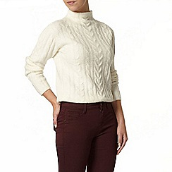 Dorothy Perkins - Petite ivory cable jumper