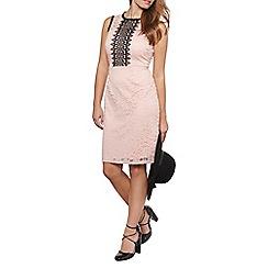 Dorothy Perkins - Petite blush lace dress