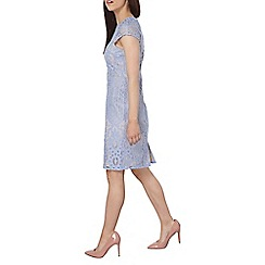 Dorothy Perkins - Petite blue lace fitted dress