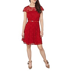 Dorothy Perkins - Petite red lace prom dress