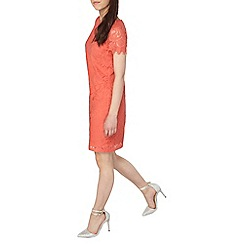 Dorothy Perkins - Petite coral lace shift dress