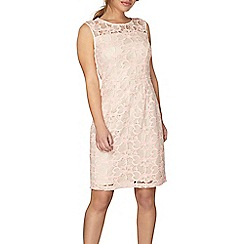 Dorothy Perkins - Petite pink and nude lace shift dress