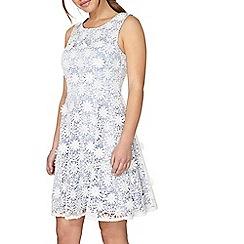 Dorothy Perkins - Petite blue daisy prom dress