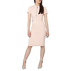 Dorothy Perkins - Petite blush zip pencil dress