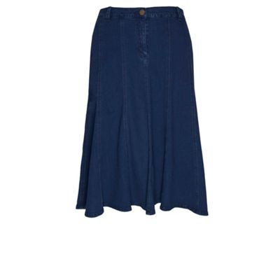 Regular Length Denim Panelled Skirt