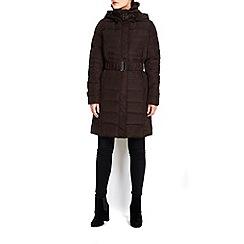 Wallis - Chocolate buckle faux fur trim padded coat