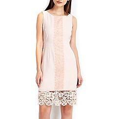 Wallis - Petite pale pink lace panel dress