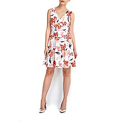 Wallis - Petite coral floral prom dress