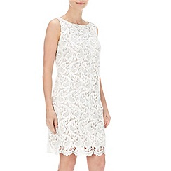 Wallis - Petite white lace shift dress