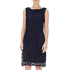 Wallis - Petite navy lace shift dress