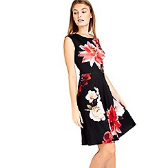 Wallis - Petite black floral flare dress