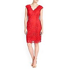 Wallis - Petite orange v neck lace dress