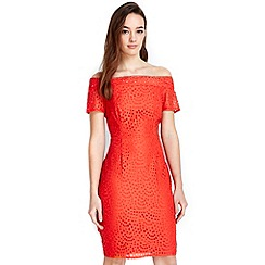 Wallis - Petite orange lace bardot dress