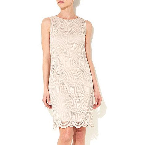 Wallis - Oyster lace petite shift dress