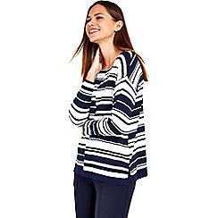 Wallis - Petite navy stripe jumper