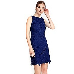 Wallis - Petite navy lace shift dress