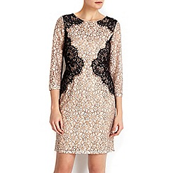 Wallis - Petite stone mix and match lace dress