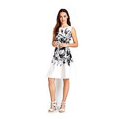 Wallis - Petite ivory floral fit & flare dress