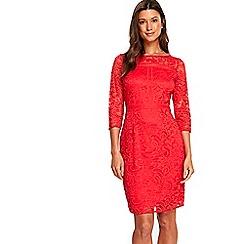 Wallis - Coral lace panel shift dress