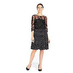 Wallis - Lace polka dot fit and flare dress