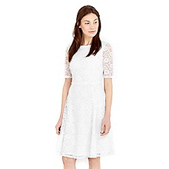 Wallis - Ivory floral lace fit &flare dress