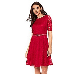 Wallis - Berry belted lace fit and flare dress