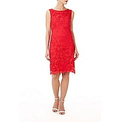 Wallis - Cherry floral lace shift dress