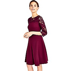 Wallis - Berry lace fit and flare dress