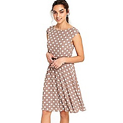 Wallis - Pebble spot fit and flare dress