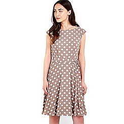Wallis - Spot print fit and flare dress