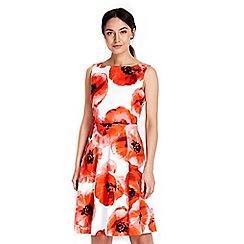 Wallis - Red ivory floral printed dress