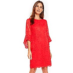 Wallis - Coral sleeves detail lace dress
