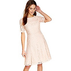 Wallis - Blush floral lace fit and flare dress