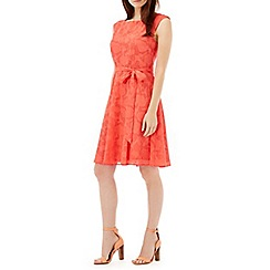 Wallis - Coral burnout fit and flare dress