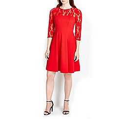 Wallis - Red lace top fit and flare