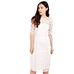 Wallis - Oyster lace half sleeve dress